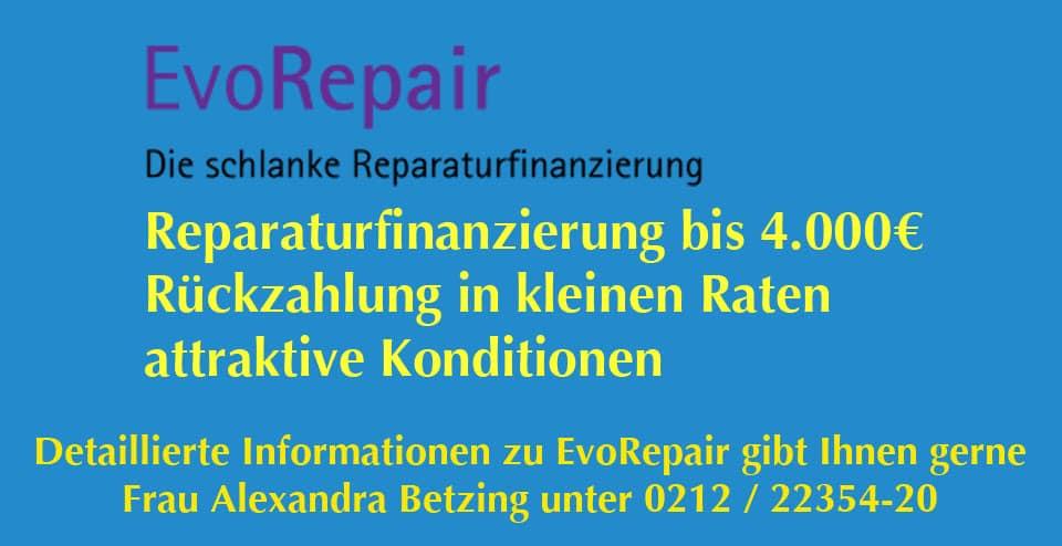 Header Evo Repair Winter 1